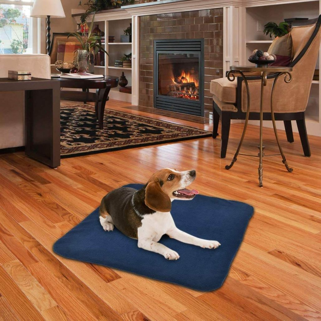 Heated dog bed by Riogoo.
