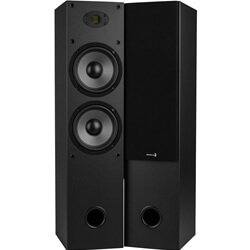 Home standing speakers by Dayton Audio.