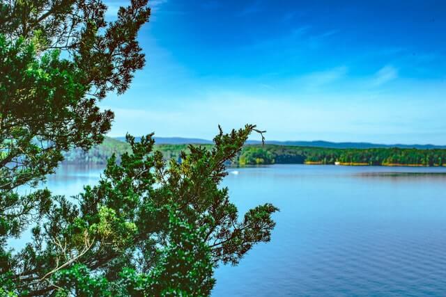Mountain View, Arkansas.