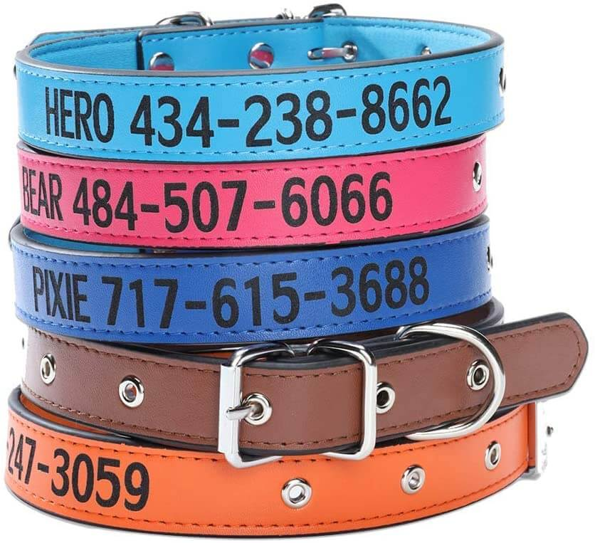 Personalized dog collars by Aiseel.