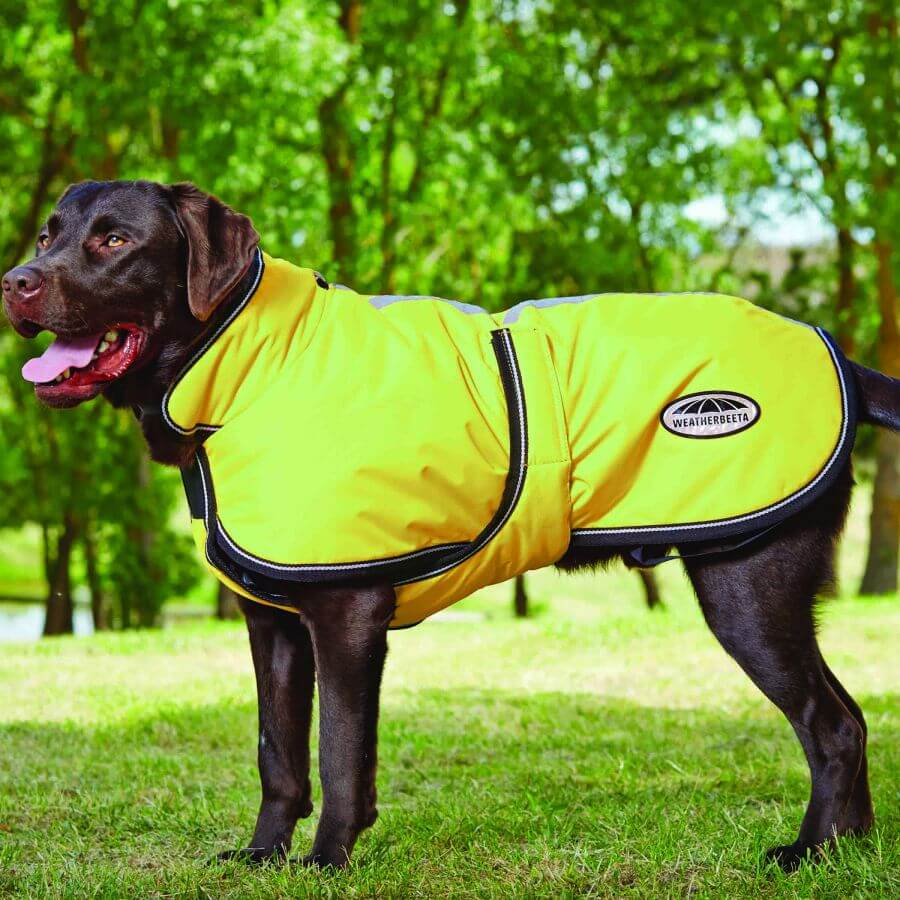 Reflective winter parka for dogs by Weatherbeeta.