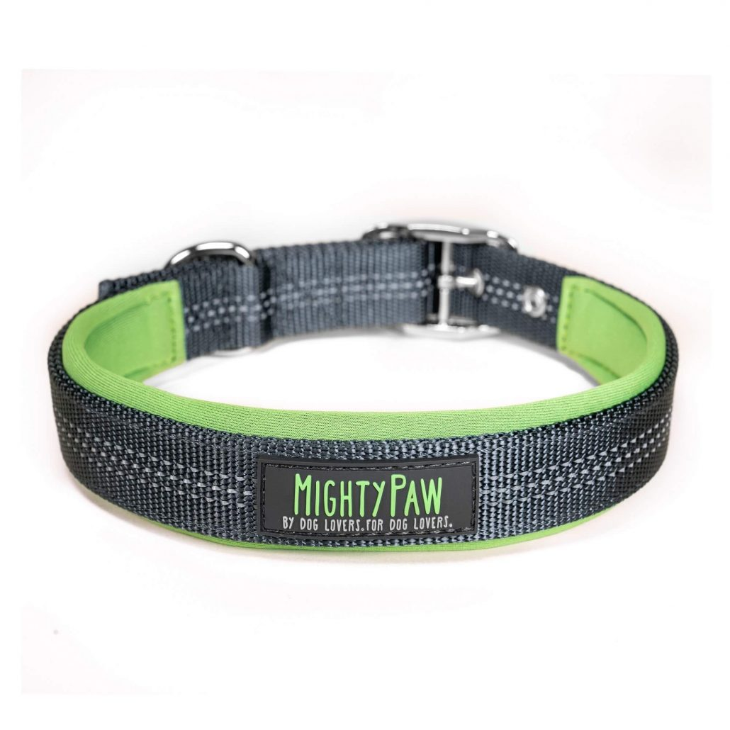 Mighty Paw Sport collar 2.0 for dogs.