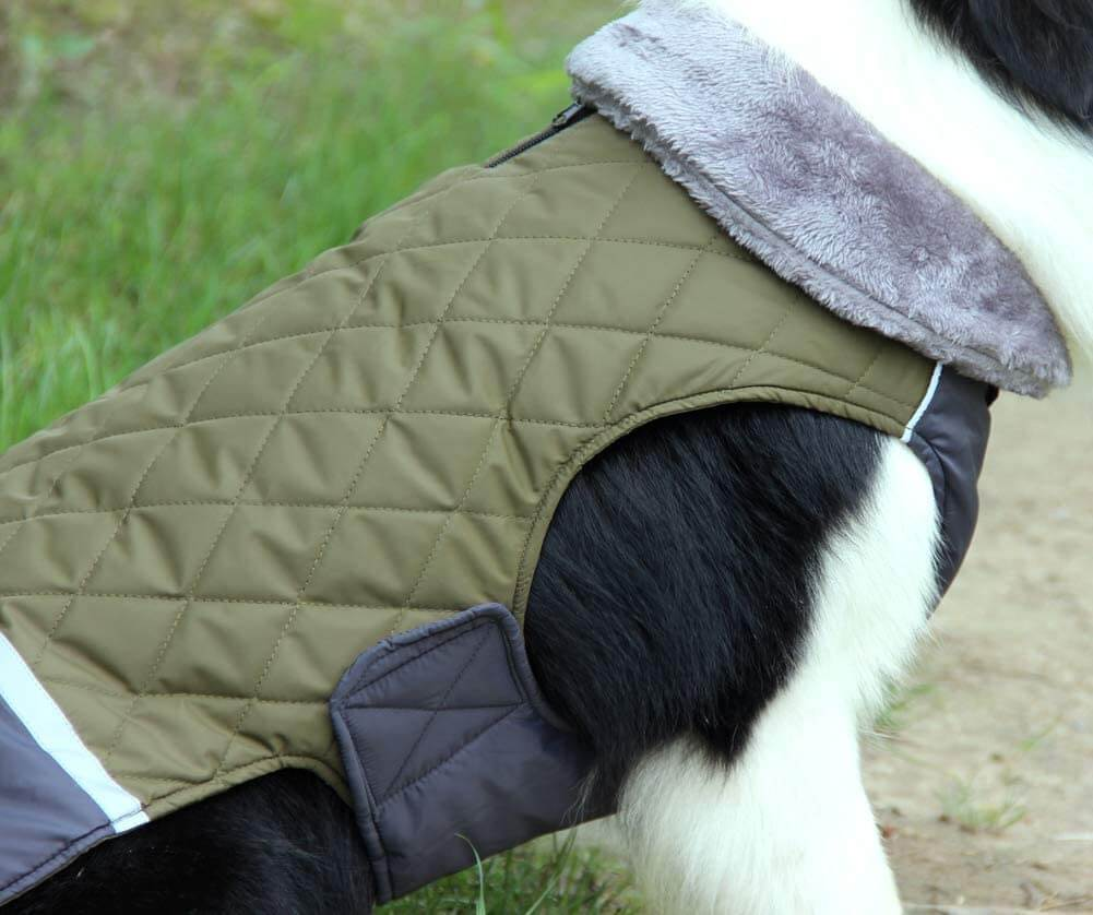 Stylish winter coat for dogs with fleece collar.