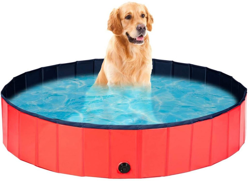 Large outdoor dog and pet pool by Ledmo.