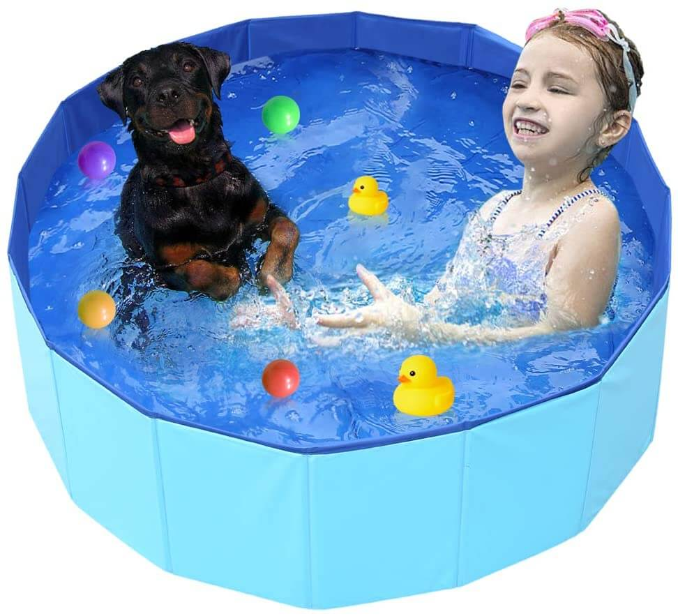 Outdoor foldable dog pool for small dogs.