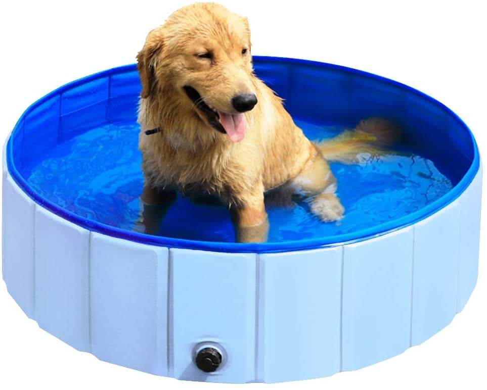 Outdoor portable dog pool by Slowton.