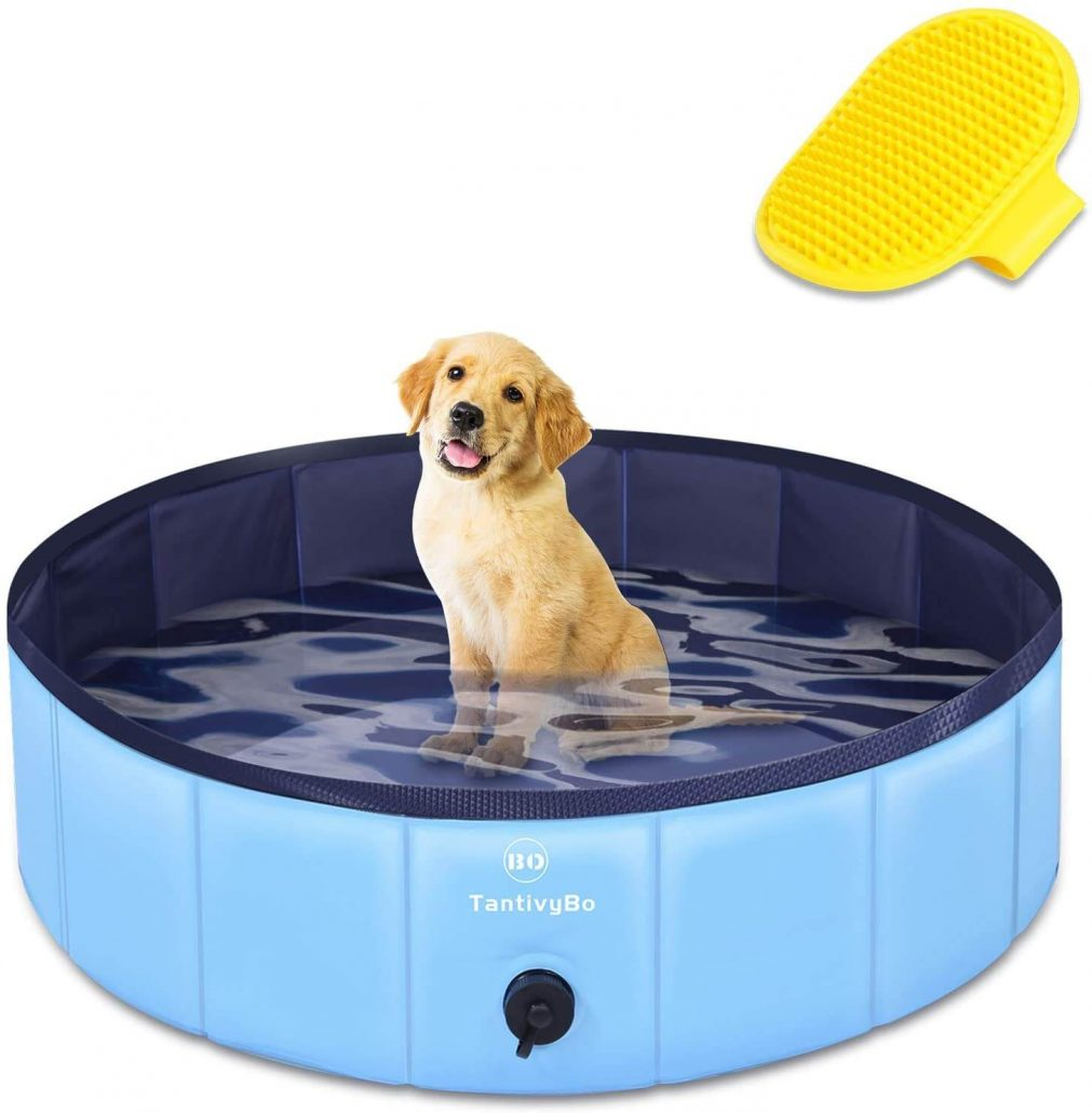 Outdoor dog pool by TantivyBo.