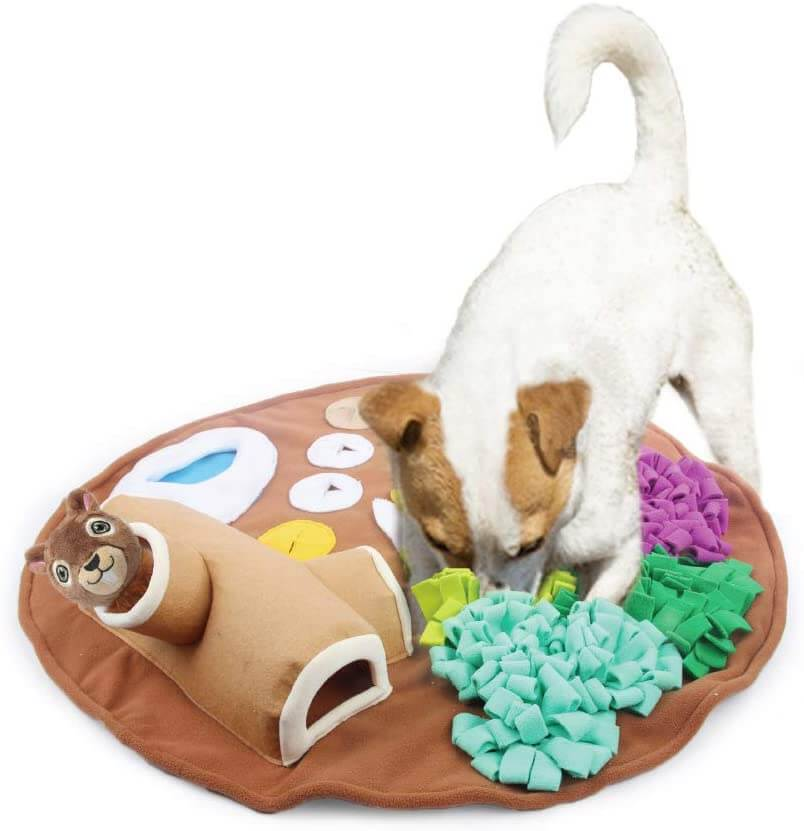 Dog snuffle mat with squeaky squirrel toy.
