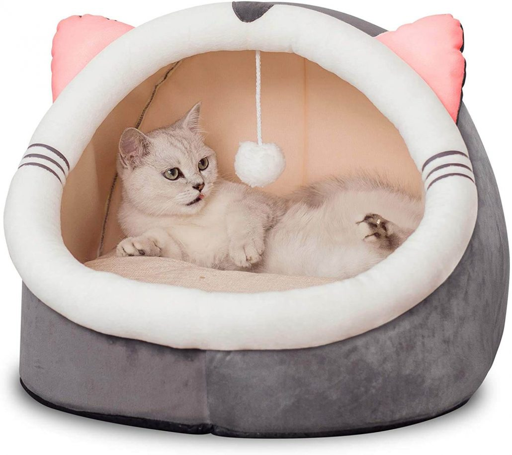 Cute modern cat bed with toy.